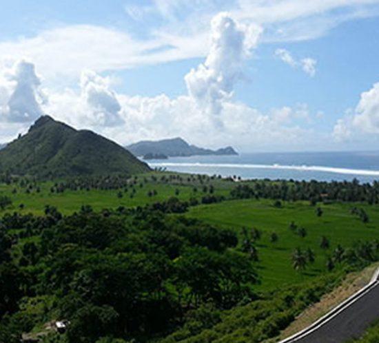 Lombok Land For Sale